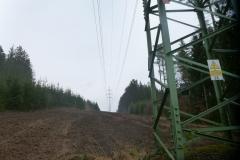 Plocha-zpracovana-lesni-frezou